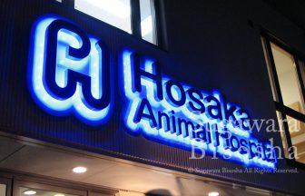 ほさか動物病院 様 プレミアムLEDバックライト リニューアル開業実績